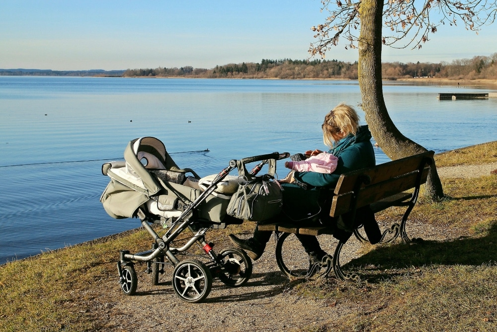 Best Trio Stroller. Offers And Prices