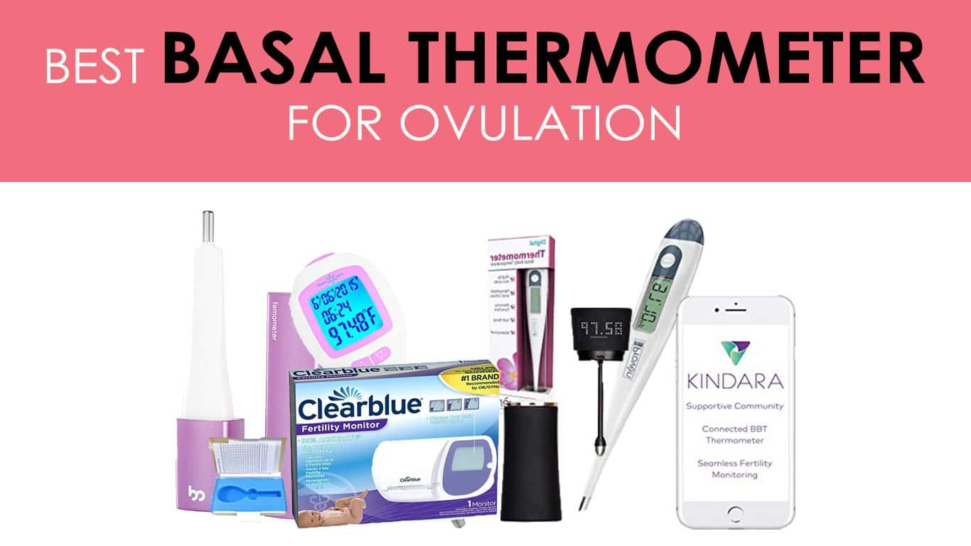 Best Basal Thermometer
