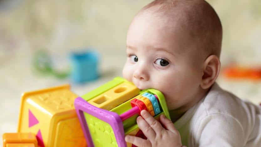 The Best Brands And The Most Popular For Babies - Small And Strong